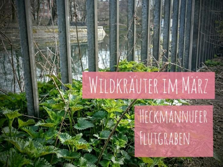 WildkräuterMärz