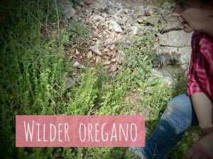 WilderOregano