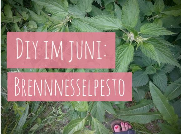 Brennnessel-Pesto-Juni